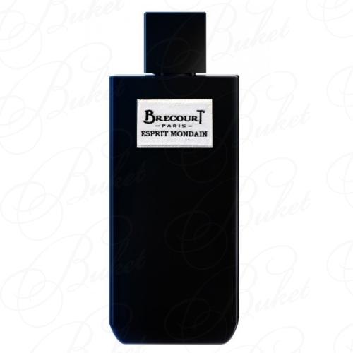 Парфюмированная вода Brecourt ESPRIT MONDAIN 100ml edp